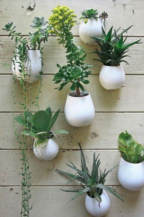 Interessant: de planten potjes! Schijnbaar Ikea keuken potten
