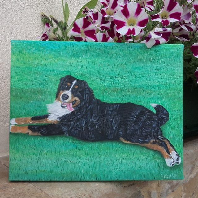 "287 Likes, 5 Comments - Christa (@oilpaintingschrista) on Instagram: ""Custom order dog portrait #oilpaintingschrista #oilpainting  #doglovers #dogoftheday #dog #puppy…"""