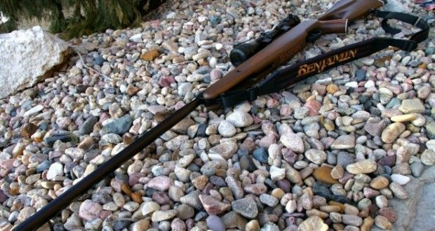 The 5 Best Air Rifles For Off-Grid Survival  | Off The Grid News