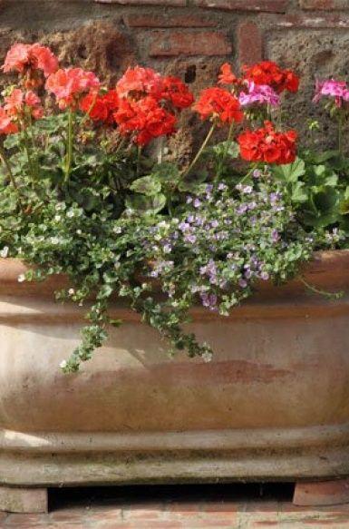 Stílusos virágcserepek