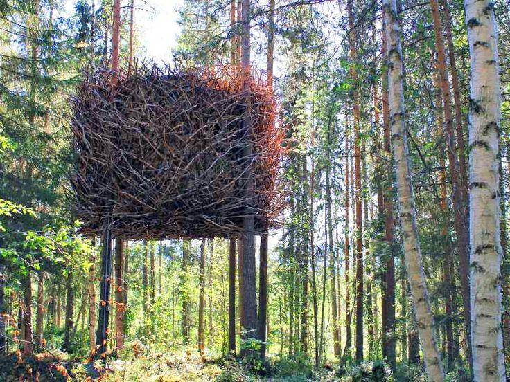 Tree hotel in Sweden