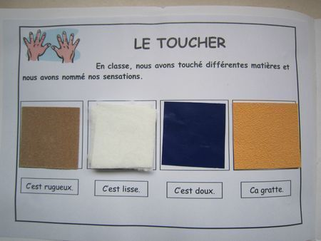 French five senses vocabulary. Les cinq sens: le toucher