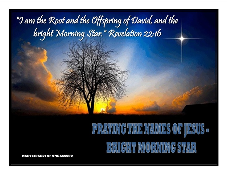 Of david and the bright morning star quot revelation 22 16 jesus