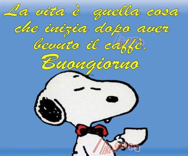 Buonanotte con snoopy wroc awski informator internetowy for Vignette simpatiche buongiorno