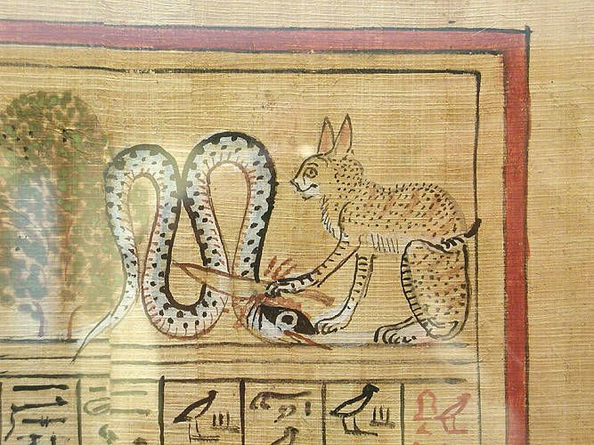 Papyrus of Hunefer, detail.jpg More details Detail from the papyrus of Hunefer; the sun god represented as a cat kills the serpent of darkness with a knife. Egypt