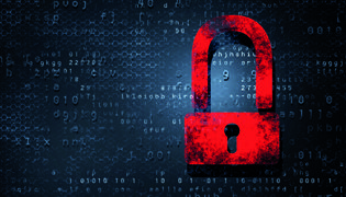 Insuring cyberspace Local businesses are under-insured when it comes to cyber crime risks, and many wrongly believe that they're covered by regular policies. $