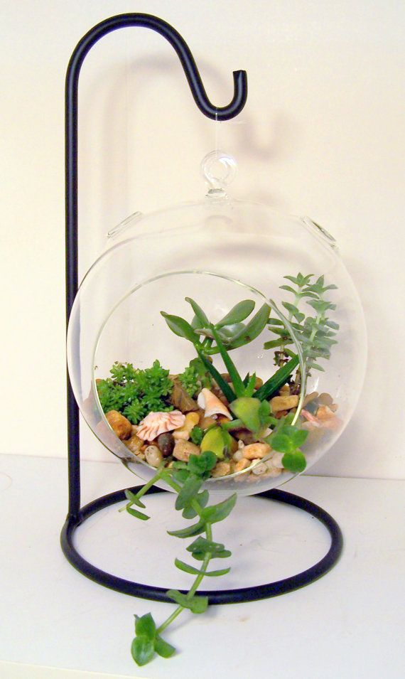 Terrarium Glass Hanging Teardrop or Round by FlathersCreations