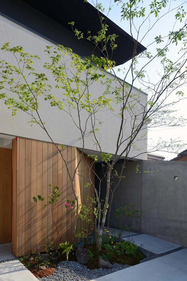 Project: House in Fushimi - DNA