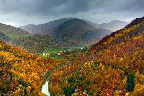 Selva de Irati, Navarra :: Los mejores bosques de España --> http://www.navartur.es/ideas-y-fiestas/los-mejores-bosques-de-espana.htm