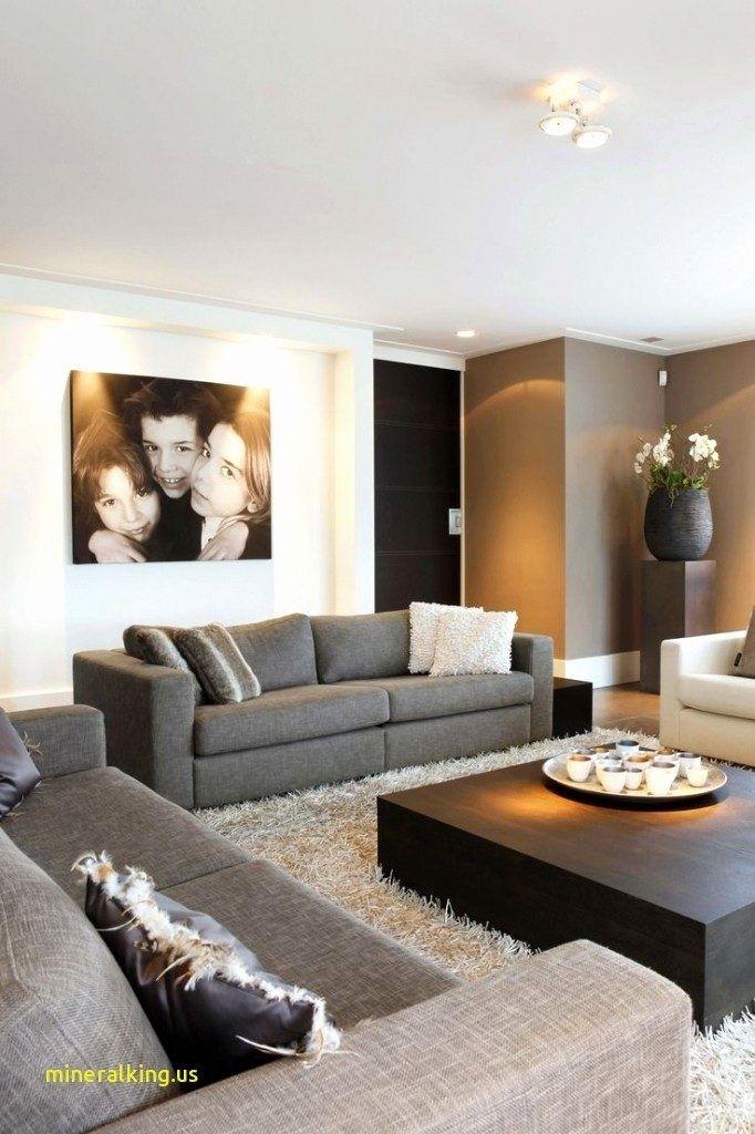 Deco Salon Gris Et Marron Design De Maison Moderne Davidreed Co Luxury Living Room Living Room Decor Cozy Living Room Color