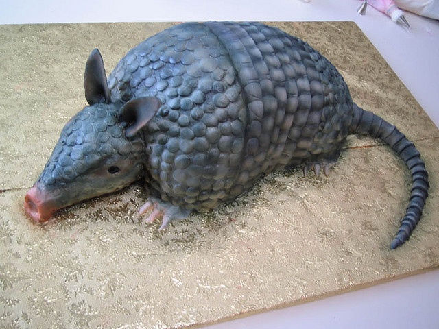 Armadillo cake (Steel Magnolias). Yes this is really what my fiance picked! He loves that movie.