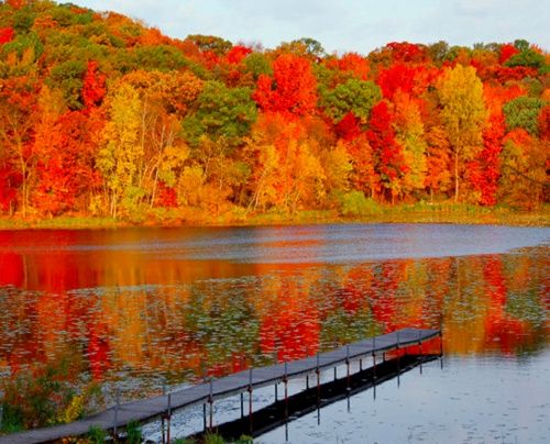 """I miss Minnesota fall weather and colors!! Ι called Minneapolis """"home"""" for 3 years and there is not a day that goes by without missing it."""