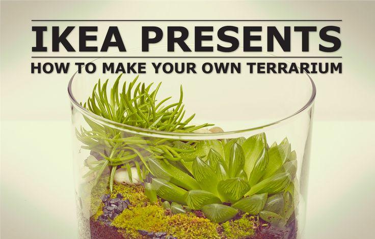 IKEA presents -- make your own terrarium #tutorial #succulents #weddingfavour