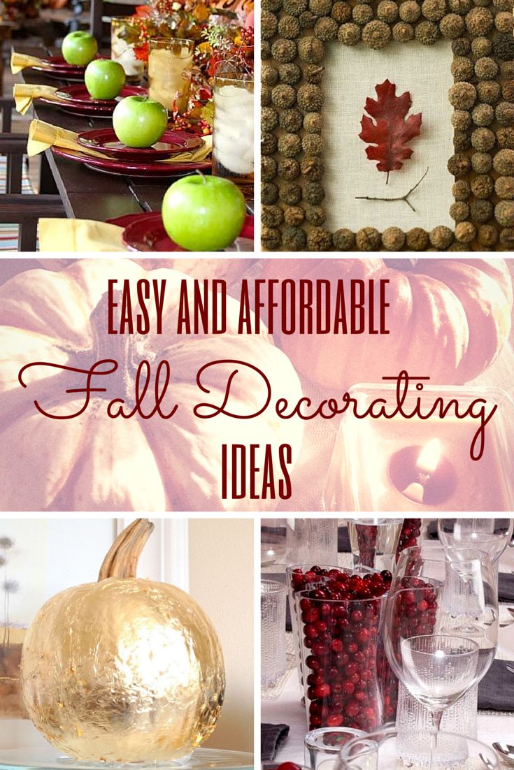 Update your apartment decor with these easy and affordable fall decorating ideas!