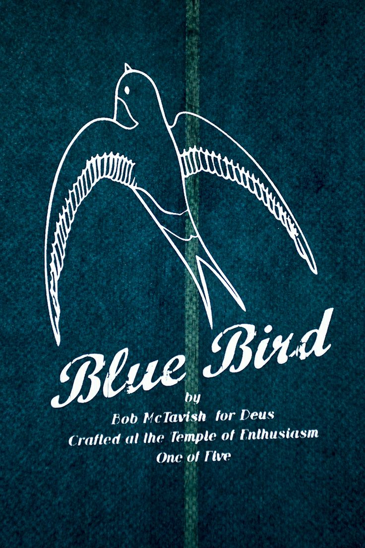 Bringing Back the Blue Bird | Deus Ex Machina | Custom Motorcycles, Surfboards, Clothing and Accessories