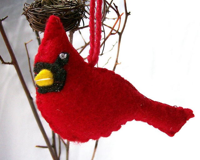 Best images about cardinal and red birds for mom on
