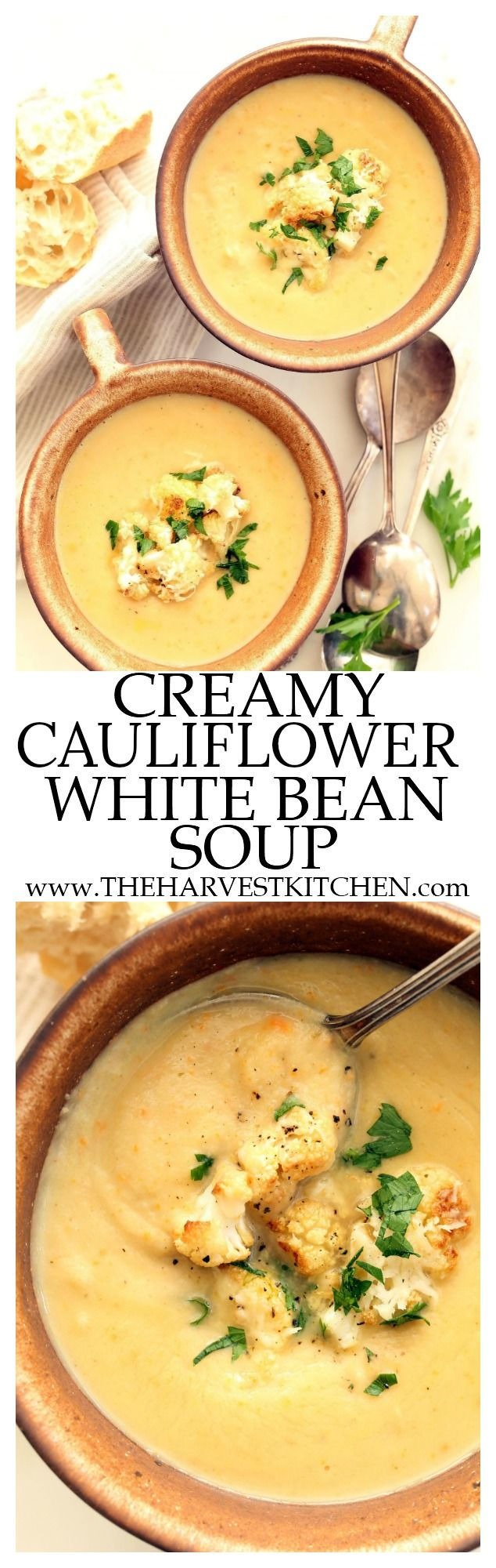 This Creamy Cauliflower White Bean Soup is a perfect winter soup that's loaded with cauliflower, carrots, celery and onions. Blended white beans are used to thicken this soup in lieu of milk or cream. @theharvestkitchen.com