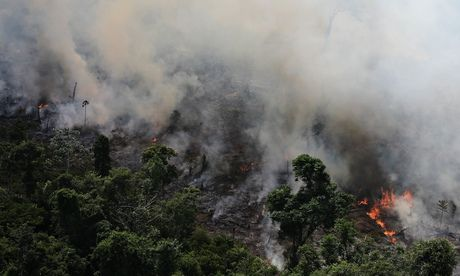 The Amazon rainforest has degraded to the point where it is losing its ability to benignly regulate weather systems, according to a stark new warning from one of Brazil's leading scientists.  In the past 20 years, the author notes that the Amazon has lost 763,000 sq km, an area the size of two Germanys. In addition another 1.2m sq km has been estimated as degraded by cutting below the canopy and fire.