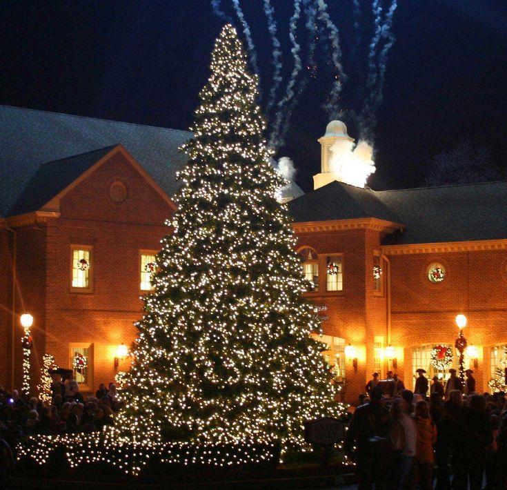 xmas tree decorating ideas with amazing large natural christmas tree design for christmas tree decorating ideas - Outdoor Christmas Tree Decorations