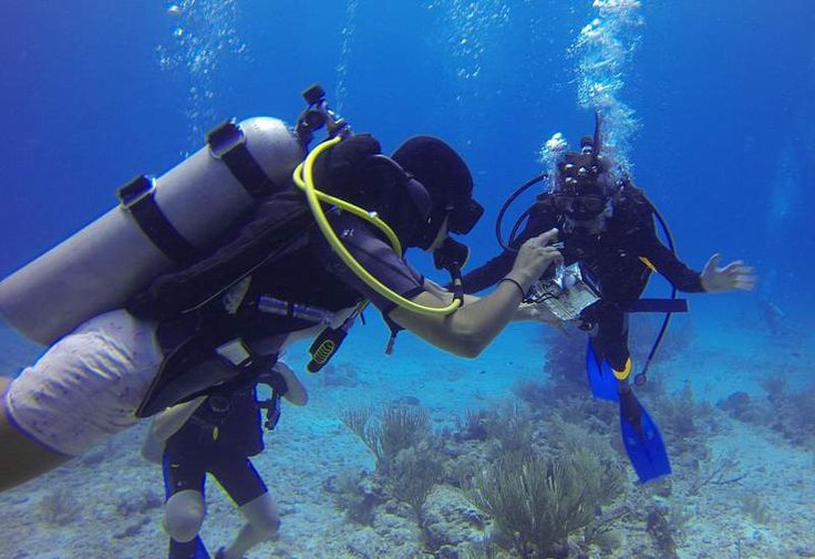 Scuba Diving in Havelock Island Intro Program | Experience Andamans