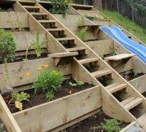 The 13 best images about Garten on Pinterest | Terraced garden ...