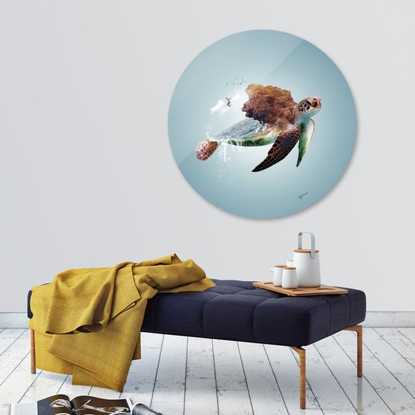 Discover «Turtle», Limited Edition Disk Print by Stefania Piredda - Giffyart - From 95€ - Curioos