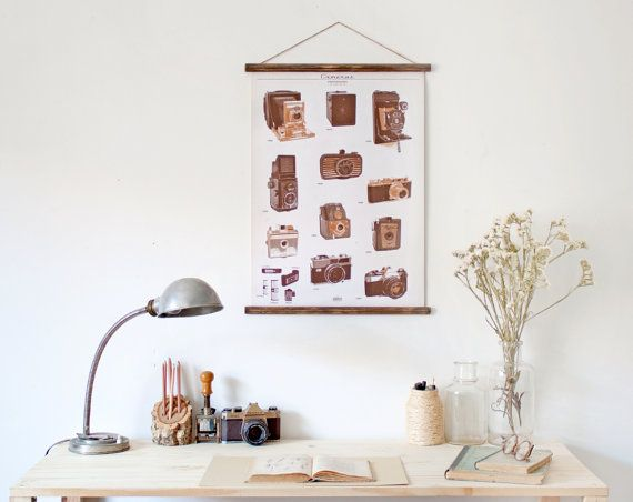 Photography cameras - timeline canvas poster - vintage educational chart illustration CAP2004