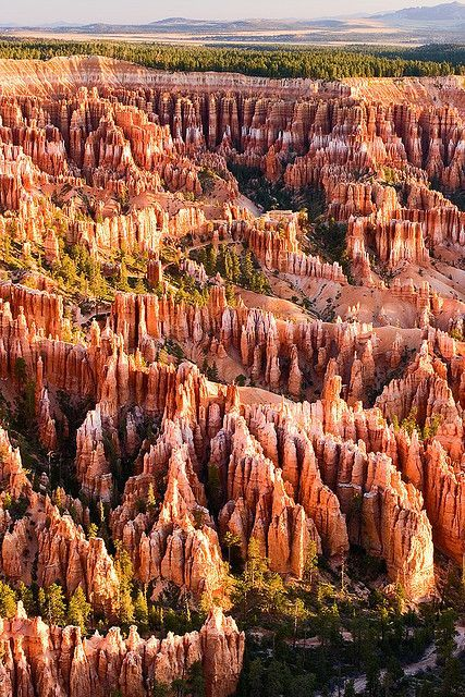 Bryce Canyon, hoodoos range in size from that of an average human to heights exceeding a 10-story building.