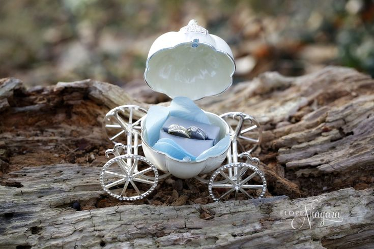 Cutest little ring box at the little log wedding chapel in Niagara. A carriage fit for a fairytale wedding