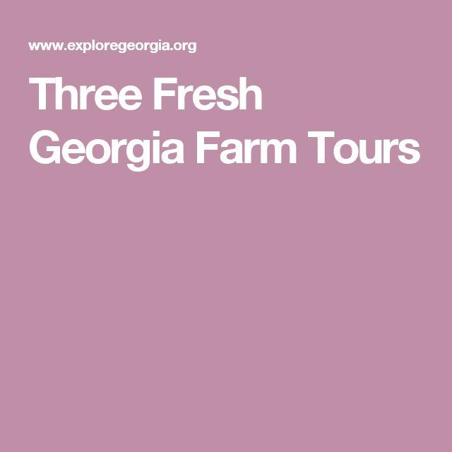 Three Fresh Georgia Farm Tours