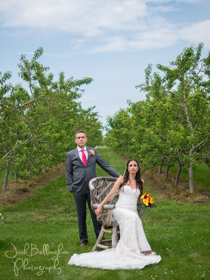 It doesn't get more peachy than this! Gorgeous Orchard Wedding in the Heart of Niagara. Intimate wedding couple. @orchardcroft #JoshBellinghamPhotography
