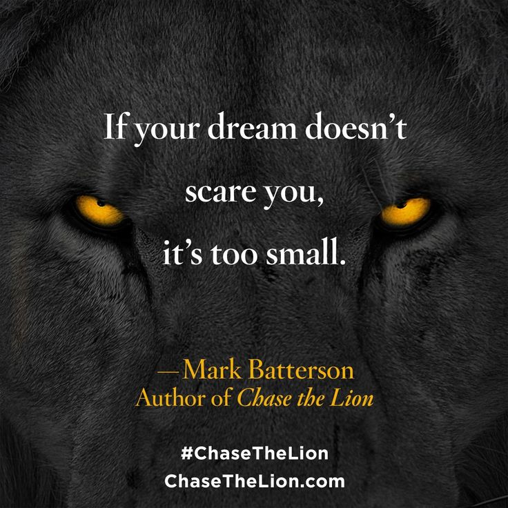chase the lion mark batterson pdf