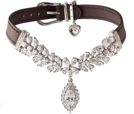 La Jeune Tulipe Diamond Dog Pet Collar - EXCLUSIVE TO POSH PUPPY BOUTIQUE - Collars, Leads & Harnesses - Luxury & Diamond Collars Posh Puppy...