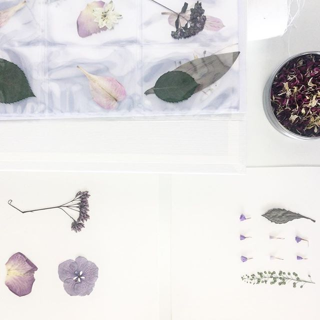 Making flower art in the shop today with @rghr_gl 🌸🌿
