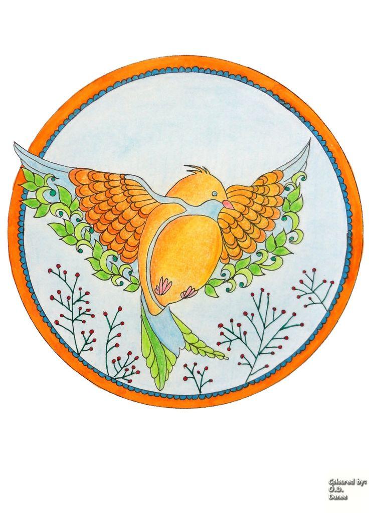 Tallósi Zsuzsa - Birdie