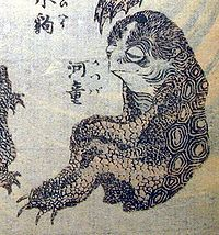 Kappa - Japanese mythological creature derived from the giant salamander