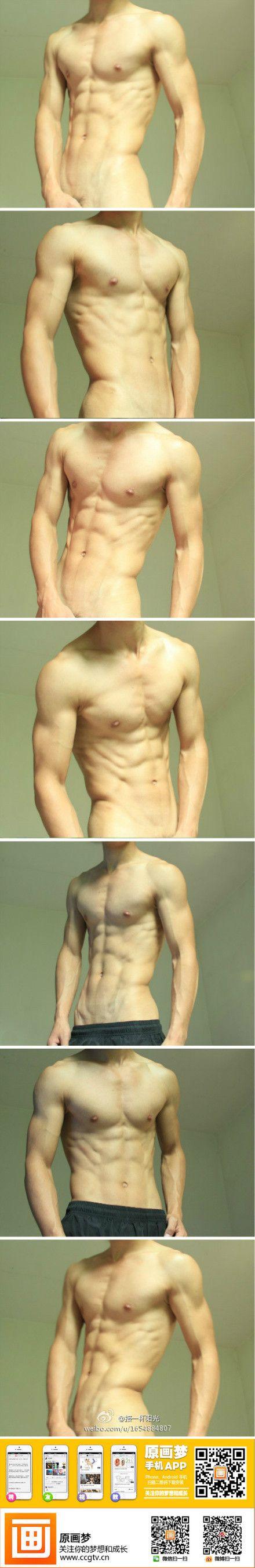 男性、筋肉