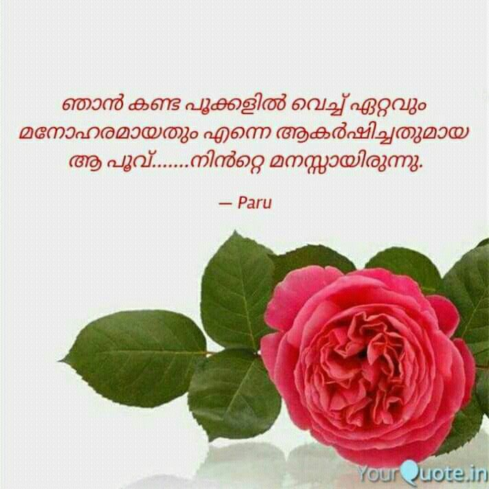 Pin By Meghamalhar On Malayalam Quotes Malayalam Quotes Flowers Plants