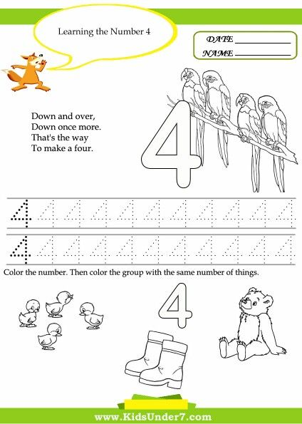 9 best Number 4 Worksheets images on Pinterest