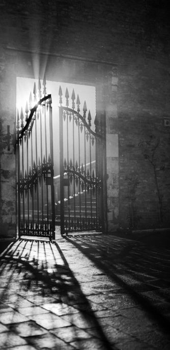 Art Platinotypes -  Venice. Play of light on a gate. Ferruccio Leiss 1945 ca.  Fratelli Alinari Museum Collections-Leiss Archive, Florence