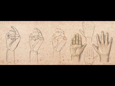 Как рисовать руки - YouTube