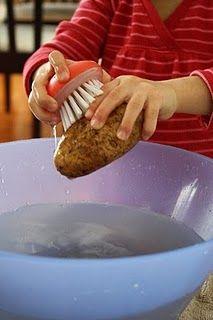 Scrubbing Potatoes                                                       …                                                                                                                                                                                 More                                                                                                                                                                                 More