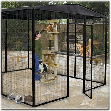how to build a cat enclosure for indoors