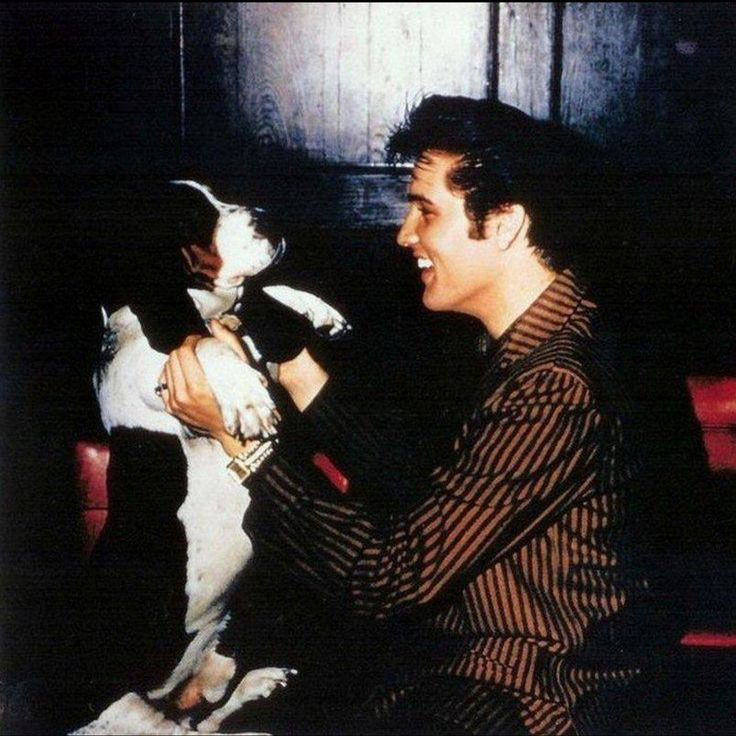 """Elvis at rehearsals for the Steve Allen Show on July 1, 1956.  Even though Elvis resented having to perform his smash hit """"Hound Dog"""" to an actual dog on national TV while dressed in coat and tails, it is clear from this picture that he didn't resent or blame the basset hound.  This is just one of the many great pics that portray Elvis' lifelong love of dogs."""