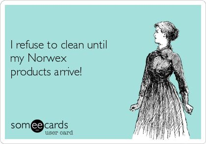 I refuse to clean until my Norwex products arrive!