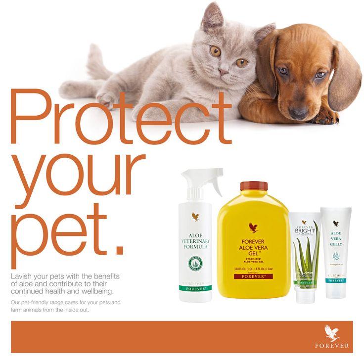 #FLP has created #AloeVeterinary Formula – Mother Nature's gentle Aloe spray for animals. Treat your pet today! http://link.flp.social/nyatAv