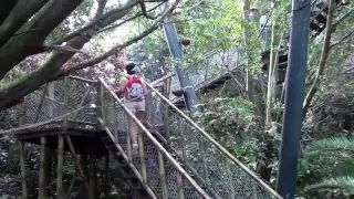 Miro Mikulas - YouTube