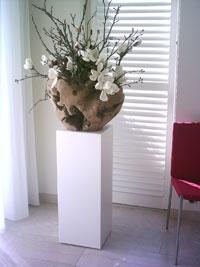 teak bowl met magnolia en takken