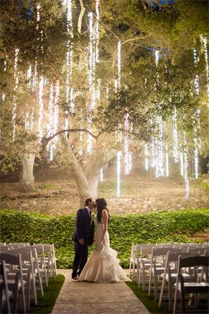 whimsical light filled tree over wedding alter - brides of adelaide