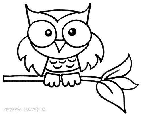 117 best images about drawing an owl on pinterest how to